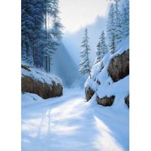 Зима в Татрах
