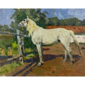 Етюд з білим конем