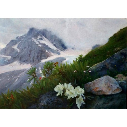 Горы. Весна. Рододендроны
