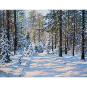 Спокойствие зимнего леса