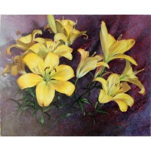 Желтые лилии. Символ королей