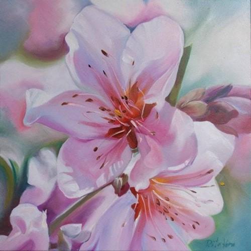 Apple flowers 2