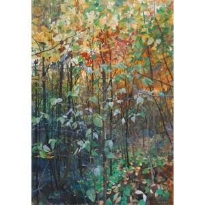 Фактура осеннего леса