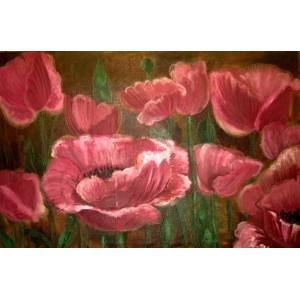 Большие розовые маки