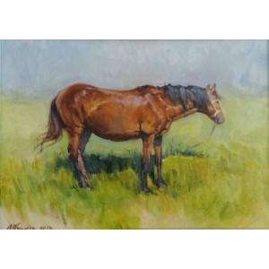 Етюд коня
