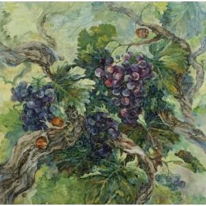 Путешествие по виноградной...