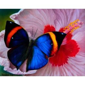 Магия бабочек