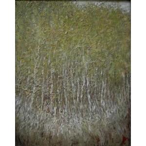 Березовий ліс