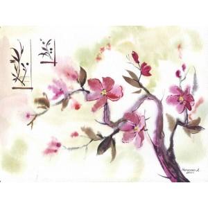 Слова цветов