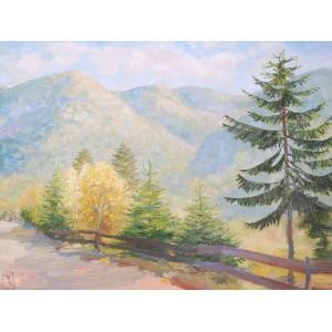 Горы Закарпатья