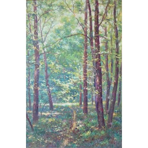 В тіні голосіївського лісу