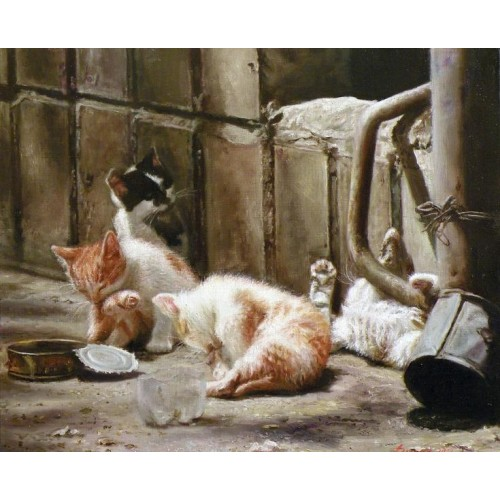 Котята. Беззаботное детство