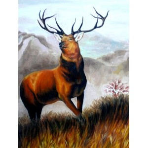 Вожак олень