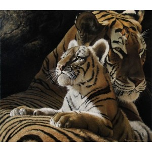Рождение золотого тигра