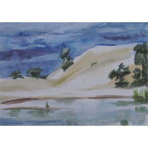 Дюна у Днепра