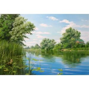 Река Ольшанка