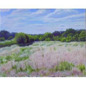 Июньские травы