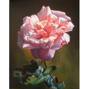 Бутон розы на тёмном фоне