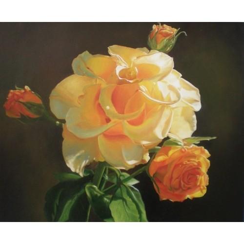 Роза в солнечных лучах